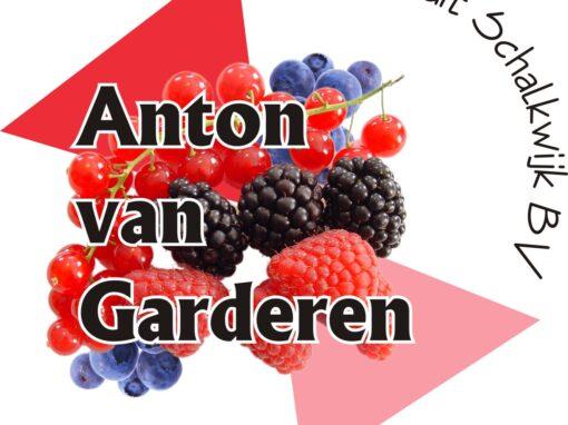 Anton van Garderen